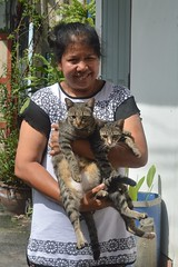 a lady with her cats (the foreign photographer - ) Tags: lady two tabby cats khlong thanon portraits bangkhen bangkok thailand nikon d3200