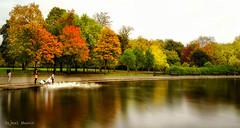Autumn Beauty (S Munir Photography) Tags: autumn beauty ngc landscapephotography photography photographer love canonphotography