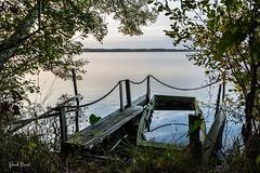 22102016-PBP_6087 (Berns Patrick) Tags: pins landes lac azur foret soleil matin ponton pigne