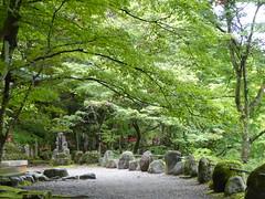 Jizo statues in the distance (seikinsou) Tags: japan nikko autumn kanmangafuchi gorge abyss daiyagawa river jizo align