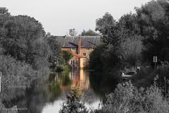 River Nene (norm.edwards) Tags: nene thrapston river beautiful colour graduated flow flowing autumn scenery