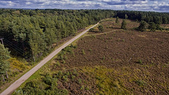 Heath from above (Morgan Masters photography) Tags: drone aerial quadcopter phantom3 dji phantom 3 elstead surrey surreyhills sunset sky birdseyeview above photography green heath heathland heather woodland wood woods forest view aspect hd colors colour colorfull colourfull colur contrast dark light bright british