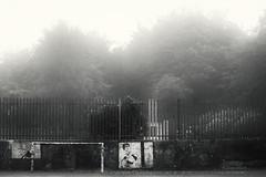 The old tennis courts (hezitate) Tags: tennis courts dipton derwentside durham northeast england fog mist foggy grim morning autumn bowlinggreen football graffiti art outdoor