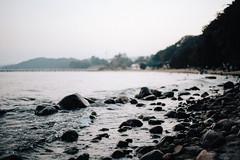 Portra 160 landscape (ukasz Skrzypek) Tags: pentax sfxn ricoh rikenon 50 17 landscape beach polishsea coast gdynia poland stones