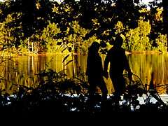 Hand in Hand (Jo Dudek) Tags: bäume himmel herbst landschaft laub natur outdoor sonne sechsseenplatte wedau wasser wambach