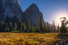 Light the Floor (sochhoeung) Tags: yosemite trees evergreens hiking exploring mountains valleys meadows grass sunlight