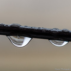 Lovely rainy days (kyrsos1) Tags: rain nature rainyday water weather rainy photooftheday autumn drops raining naturelovers macro wire