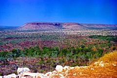 King Leopold Ranges West Kimberley 1996 (SubiYurek) Tags: kingleopoldranges westkimberley gibbriverroad ferncreek palms eucalyptus rockyoutcrops