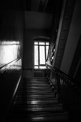 Lichtfenster (Rubina V.) Tags: berlin fenster monochrom reflexionen treppen reflection window stairs light