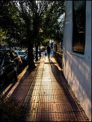 20161118-074 (sulamith.sallmann) Tags: menschen athen attika enkidu greece griechenland people sonnenlicht grc sulamithsallmann