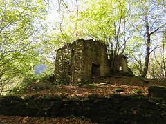 IMG_0115x (gzammarchi) Tags: italia paesaggio natura montagna forli sanbenedettoinalpe acquacheta bosco casa rudere pietra sodaccio