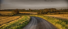 Road to Rudge ... November (HHH Honey) Tags: sigma2470lens sonya7rii 12monthsofthesameimage 11 november theroadtorudge road autumnintowinter autumncolours sunrise crops trees sigma googlenikcollection hdrefexpro froxfield wiltshire rudge