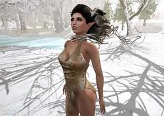 Winter's Wind (Dragon Fang) Tags: joli aisha soul insufferabledastard tableauvivant eve maitreya