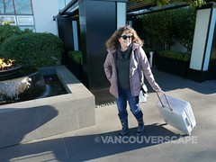 Delsey Caumartin spinner-10 (Vancouverscape.com) Tags: 2016 caumartinspinner delsey granvilleisland vancouverscape contests luggage