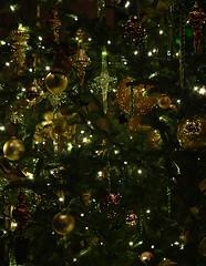 Tree Elegance (pjpink) Tags: tree christmas christmassy christmasy christmastree decorations ornament festive longwoodgardens pa pennsylvania november 2016 winter pjpink