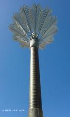 103. CITY: Palm Tree Sculpture (www.YouTube.com/PhotographyPassions) Tags: sculpture city art metalsculpture streetart cityart culture urban blue tree palmtree cityscape streetscape mlpphurban mlpphcityscape finearts metaltree metal mlpphfinearts