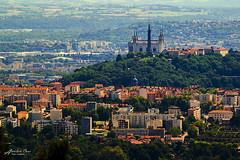 La Basilique depuis les Monts d'or (aurelcaux) Tags: lyon france city cityscape sky ciel blue orange bleu high hauteur cathedrale vue view tree arbre green vert basilique