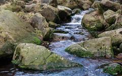 NB-5.jpg (neil.bulman) Tags: kinder edale grindsbrook brooke stream peakdistrict nature water derbyshire outdoors penineway countryside highpeak hopevalley rambling highpeakdistrict england unitedkingdom gb