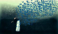 blue (ritabenacci) Tags: foresta alberi farfalle blu espressione