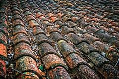 Tejas (CM Guirau) Tags: roof color architecture canon tile lluvia arquitectura village pueblo tejado