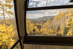Telluride in Fall (jessmarieayers) Tags: zeiss forest landscape nikon colorado gondola telluride aspen 15mm distagon aspentree carlzeiss zeiss15mm