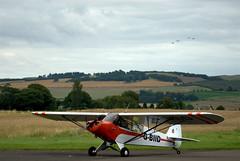 Piper PA18 Super Cub G-BIID (davidmcilroy) Tags: heron beautiful sunshine vintage scotland airport aircraft aviation perth scone piper flyin eurocopter grob socota