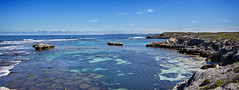 Rottnest - Rock Pools
