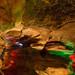 Laurel Caverns 15