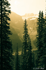 Yellow Moraine (Karl Outdoor Photography) Tags: trees mountains yellow alberta valley banffnationalpark morainelake valleyofthetenpeaks