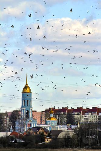 2014_04_Losiniy_Ostrov_223