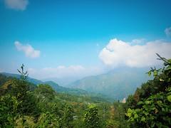 2015-10-26 09.49.38 (pang yu liu) Tags: travel 10 oct homestay 阿里山 旅遊 alishan 2015 民宿 十月 mimiyo 祕密遊