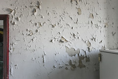 pellicine (Zioluc) Tags: old light white abandoned wall painting torino peeling apartment time interior empty turin cavallerizza luciobeltrami