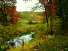 Reminiscence on Fall's colors (LarryJ47) Tags: leica autumn color fall 1 digilux liecadigilux1