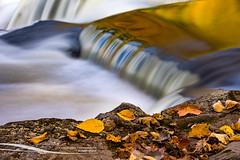 Liquid Gold and Autumn Leaves (Craig - S) Tags: autumn bondfalls michigan fall flowing reflections river season upperpeninsula water waterfall scenic paulding leaves nature outdoors environment colorful vivid background long exposure