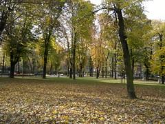 2016-10-25-7191 (vale 83) Tags: tamajdan park belgrade serbia nokia n8 autofocus colorsplosion colourartaward lunaphoto