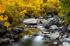 Fall Colors - Bishop Creek - Autumn - Horizontal (www.karltonhuberphotography.com) Tags: 2016 autumn boulders california clearwater creek easternsierra fallcolors flowingwater green horizontalimage karltonhuber landscape landscapephotography longexposure nature outdoors peaceful refreshing rejuvenating relaxing rocks romance silkywater stream trees water wildplaces yellow