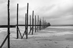 Vliehors, Vlieland, The Netherlands (BartvanDam) Tags: vliehors vlieland dutch beach poles monochrome bartvandam ricohgr bw blackwhite blackandwhite