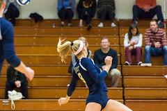 2016-10-14 Trinity VB vs Conn College - 0178 (BantamSports) Tags: camels 2016 bantams college conncollege connecticut d3 fall hartford nescac trinity women ncaa volleyball