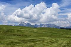 55 (Alessandro Gaziano) Tags: alessandrogaziano foto fotografia dolomiti dolomites unesco valgardena altoadige alpi italia italy colori colors panorama landscape montagna cielo