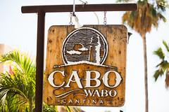 Cabo Wabo (Thomas Hawk) Tags: baja bajacalifornia cabo cabosanlucas cabowabo loscabos mexico bar vacation fav10