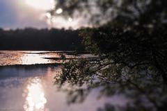 Waldsee (fredy_egdorf) Tags: waldsee spiegelung sonne nikon d750 volna3 squeezerlens tilt shift 2016 pscc2015 luminanzmaske lightroom bokeh