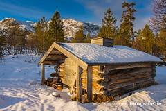DSC03039 (norwegen-fotografie.de) Tags: norw norwegen norway norge femunden femundsmarka villmark hedmark see wildnis wald landschaft