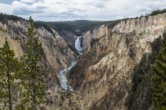 untitled-5 (eenerf) Tags: wyoming yellowstonecanyon yellowstonepark naturalbeauty nature waterfall