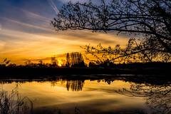 Dawn at Waters Edge (Lee532) Tags: sunrise sun lake reflection silhouette dawn cloud sky colour landscape nikon d610 sigma 1020mm outdoor serene water watersedge bartonuponhumber
