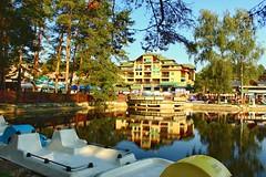 2016-10-30_11-23-37 (Todorovic Srecko) Tags: zlatibor jezero lake rest mountian mountain hotel pine pines serbia srbija