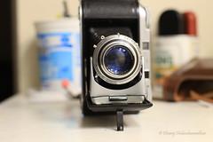 portrait mode (dheeruparu) Tags: voigtlander bessa ii 6x9 medium format film color skopar 105mm 35 range finder