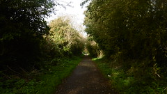 Trackbed north of Green Lane   (Scarborough - Whitby  old railway) (dave_attrill) Tags: scarborough whitby disused line trackbed route cinder path dr beeching report 1965 ner north eastern railway october 2016