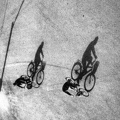 In ascending order~ Shanghai (~mimo~) Tags: street bicycle bikes shadow shotoniphone7 iphone mobile square china shanghai