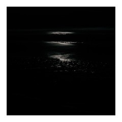 shiningsands (seba0815) Tags: monochrome beach night nightfoto dark darkphotography darkness light northsea water sand shining shiningsands mood melancholy alone square quiet blackwhite blackandwhite black white blanco nero blanc noir schwarzweis seaview seba0815 sea pentaxk5 longexposure pentaxart