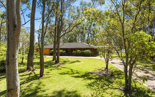 43 Kirrang Drive, Medowie NSW 2318